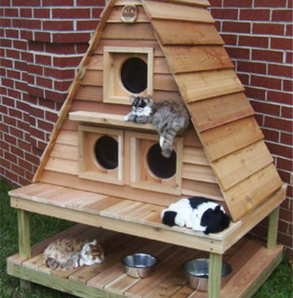 Outdoor Cat House House Building Plans
