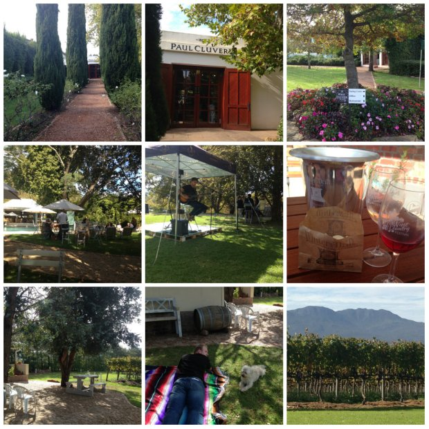 Elgin Wine Festival